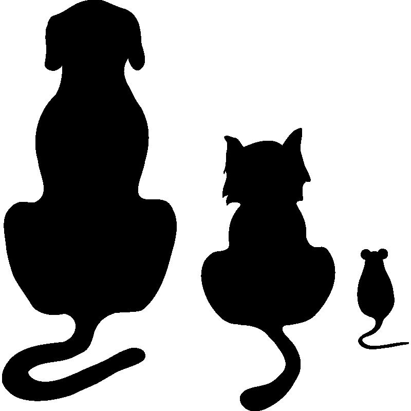 are cats a liquid