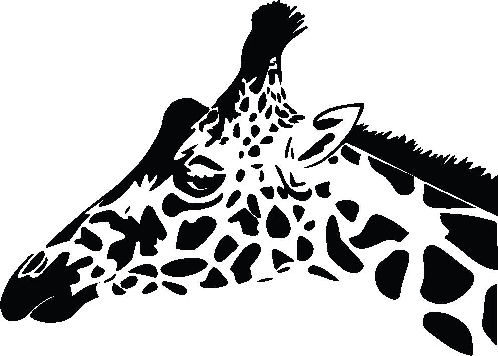 Ambiance Salle De Bain Nature : … muraux Animaux – Sticker profil de girafe – ambiance-sticker.com