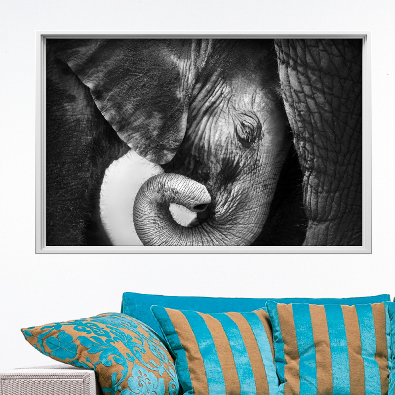 sticker cadre photo un calin d elephant 1 ambiance sticker col ros a513jpg