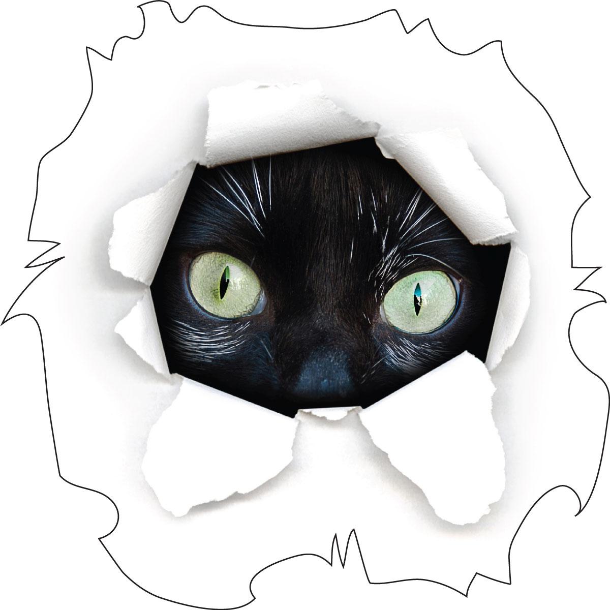 sticker-chat-noir-aux-grands-yeux-ambiance-sticker-col-ROS-191.jpg