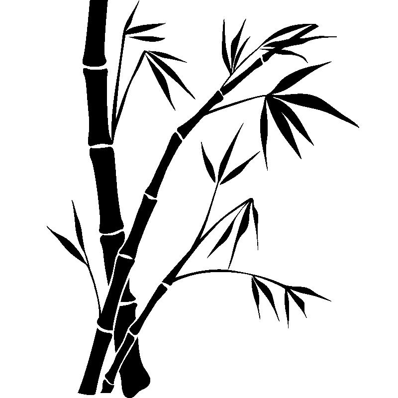 Sticker Dessin de bambou - Stickers Nature Feuilles ...