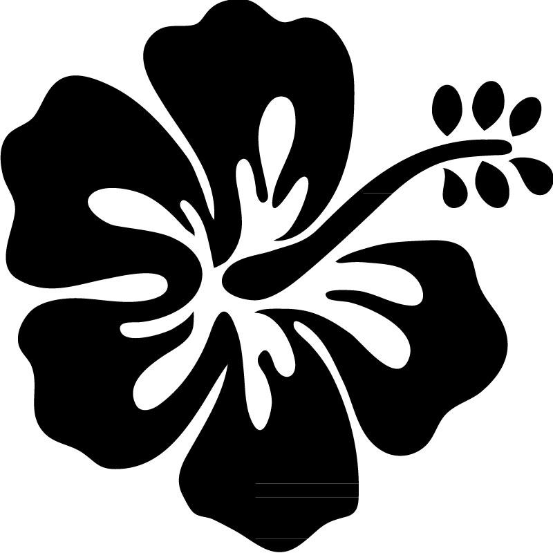 Stickers avec fleur d 39 hibiscus - Dessin d hibiscus ...