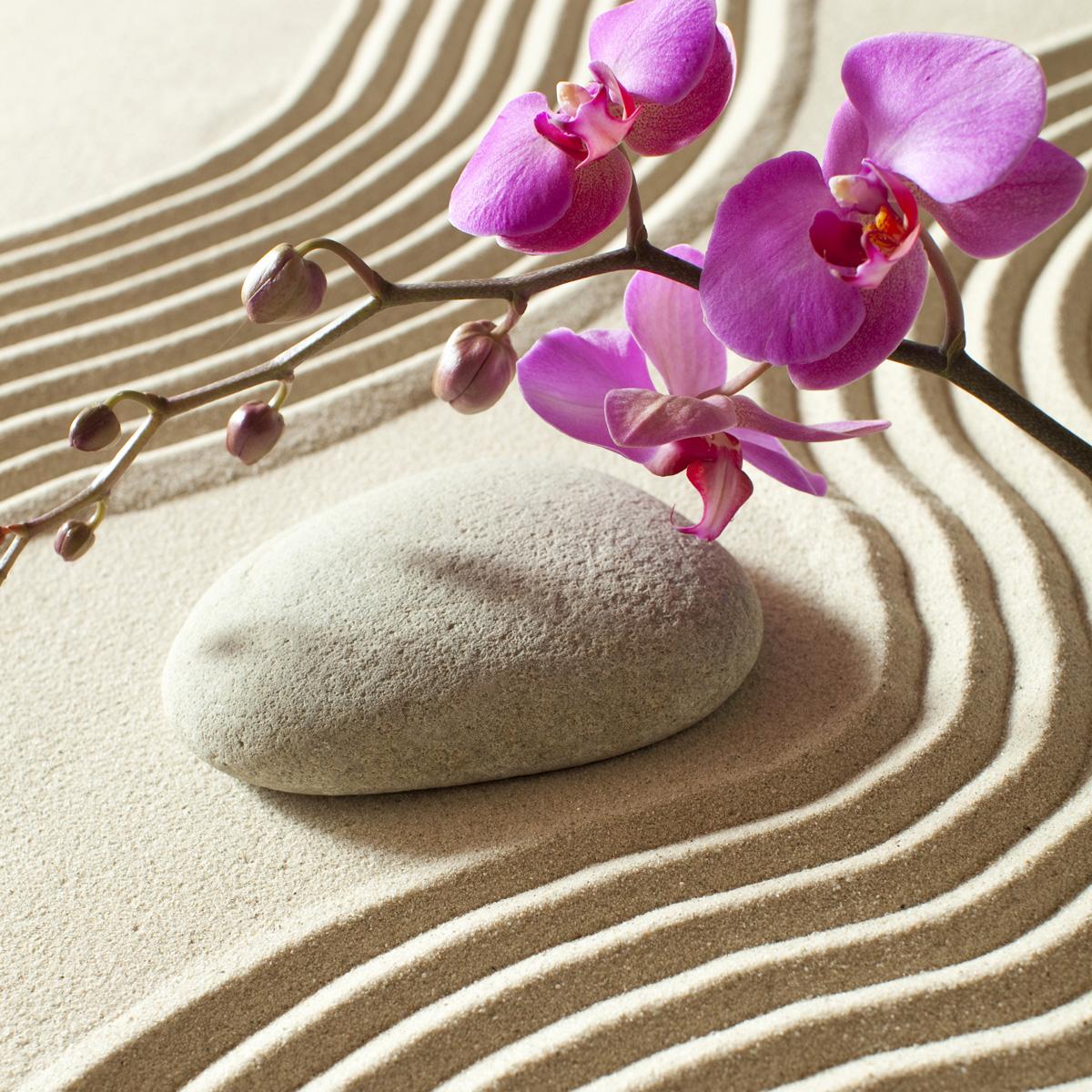 stickers meubles ikea stickers meubles ikea sable et de l 39 orchid e ambiance. Black Bedroom Furniture Sets. Home Design Ideas
