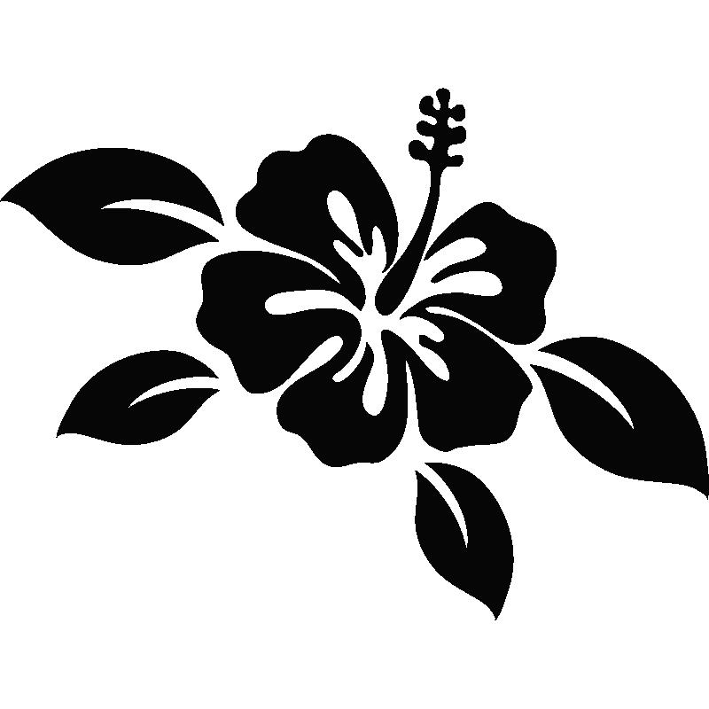 Stickers avec fleur d 39 hibiscus et de feuilles - Dessin hibiscus ...