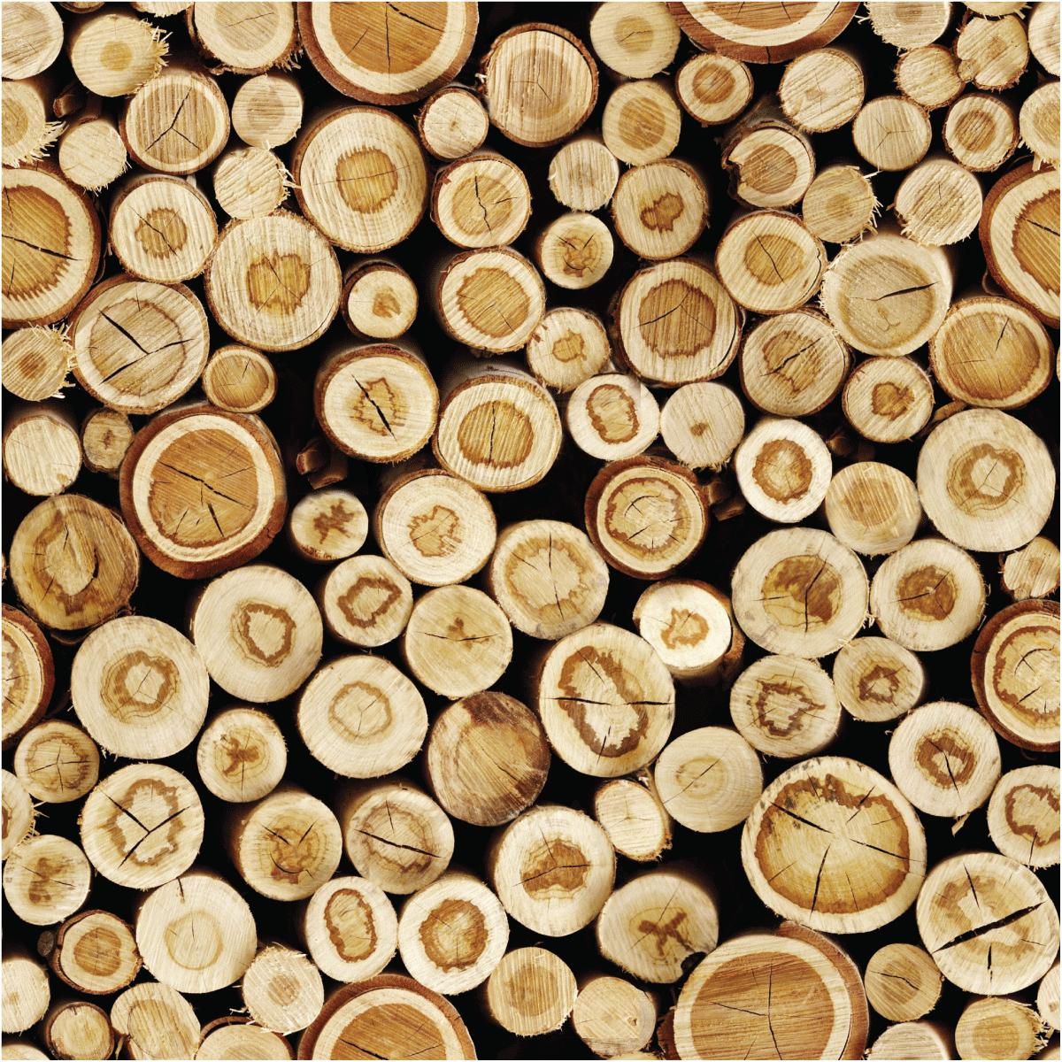 Sticker Papier Peint Rondins De Bois Du Canada Nature Arbres