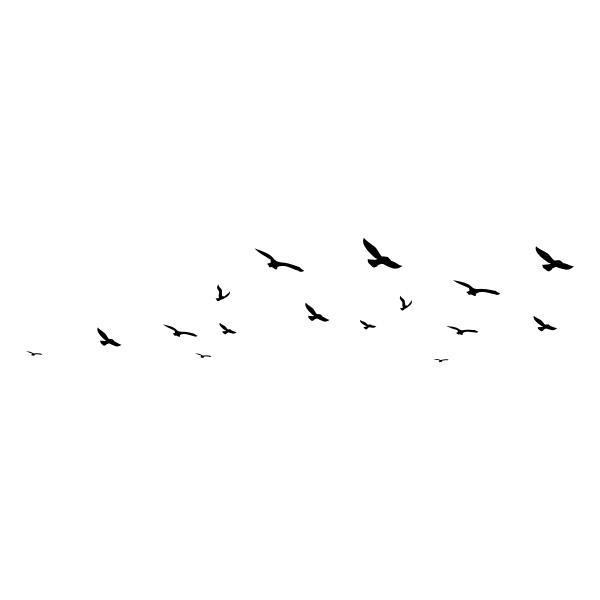 Stickers oiseaux mouettes - Dessins de mouettes ...